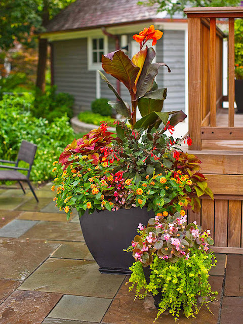 dress up your deck with knockout containers flatter areas along railings or beside a door with pots that can hold tall striking plantings such as this bright ideas deck
