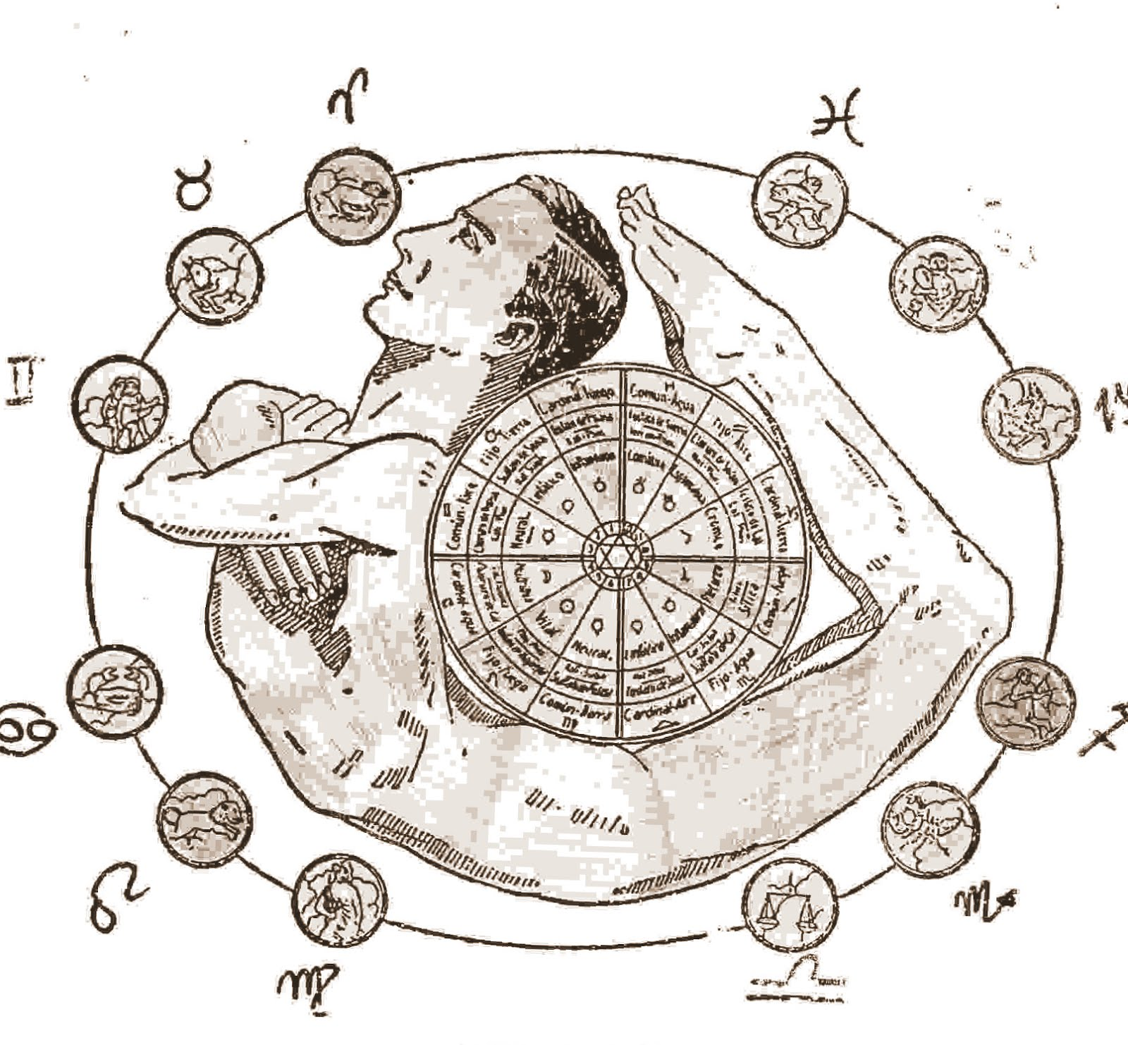 El Hombre Zodiacal y los 12 signos