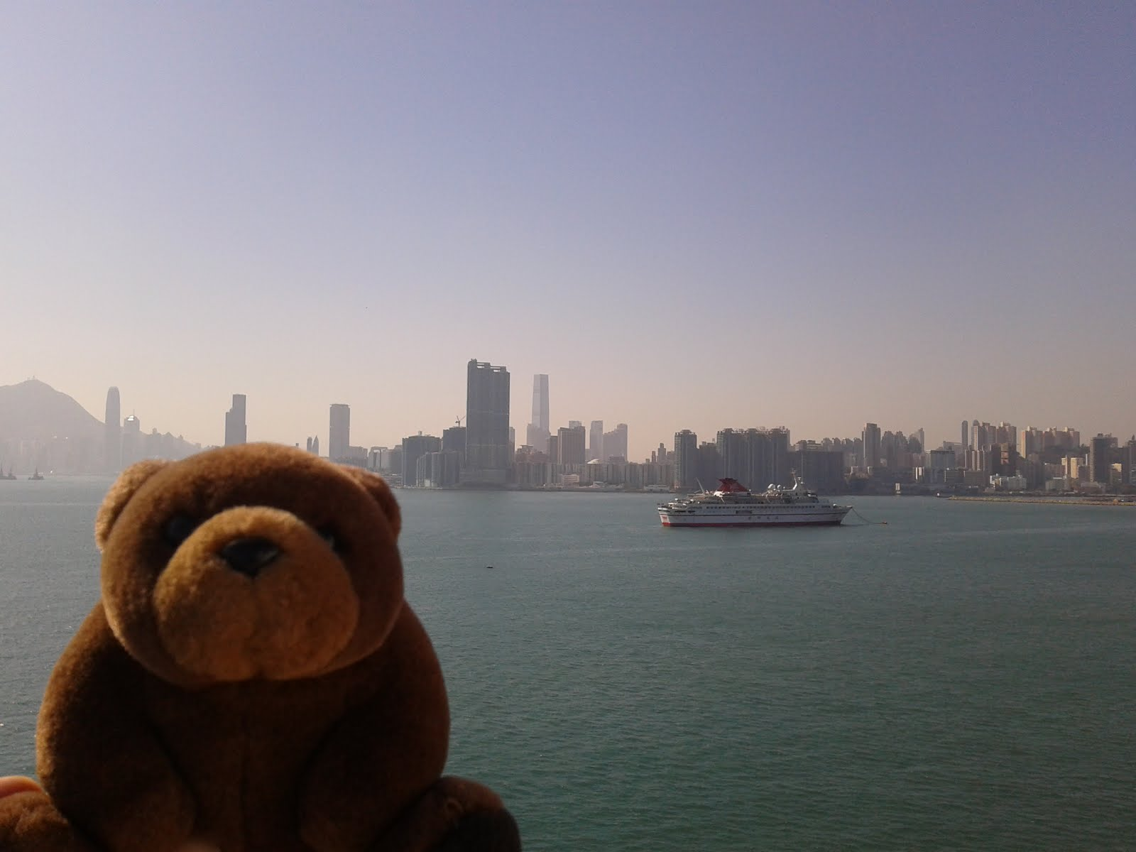 Teddy Bear in Hong Kong