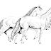Museu Nacional do Cavalo Mangalarga Marchador