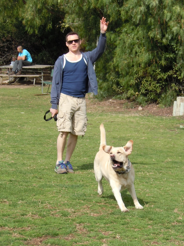 Cooper chasing balls