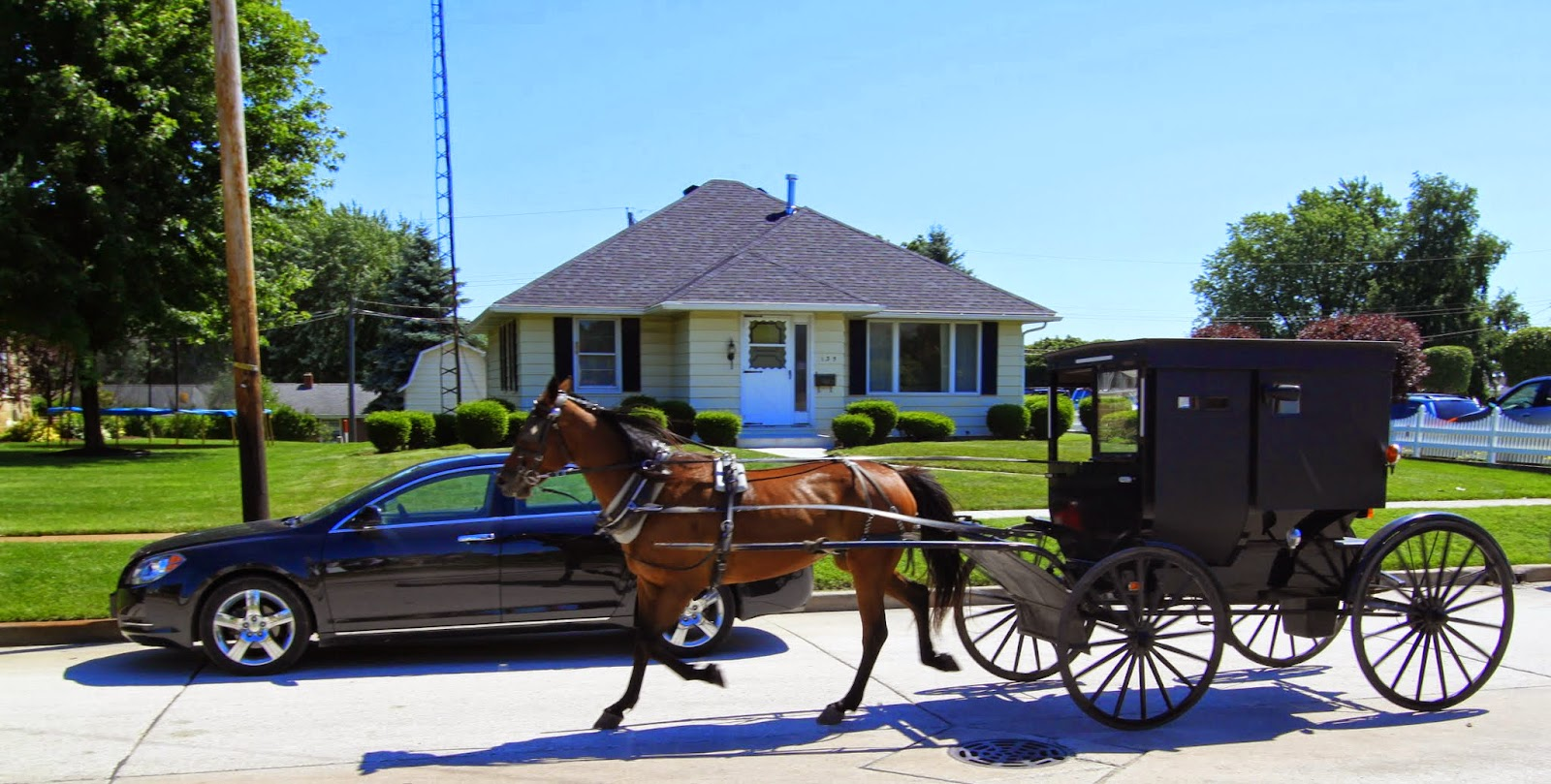 Amish Shipshewana Antique and Flea Market