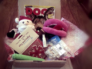 Contents of the fings for fido Christmas box