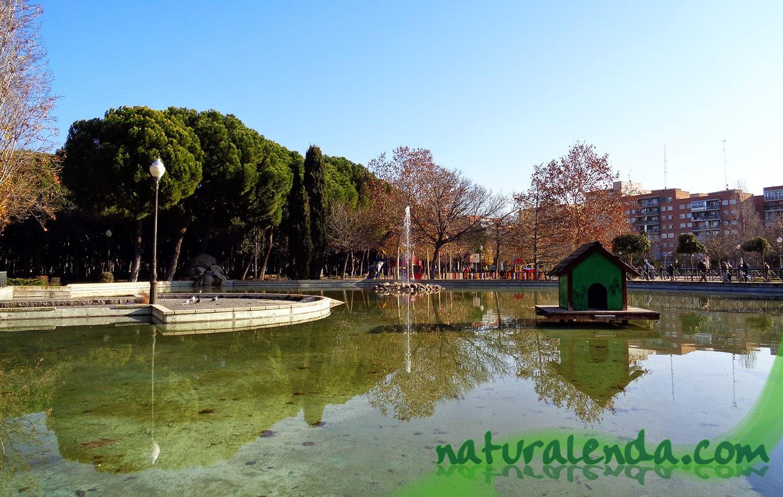 lago del parque de liana