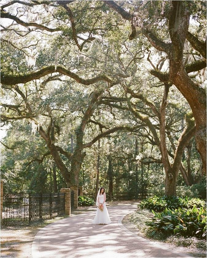 Eden Gardens State Park Wedding Le Magnifique Blog