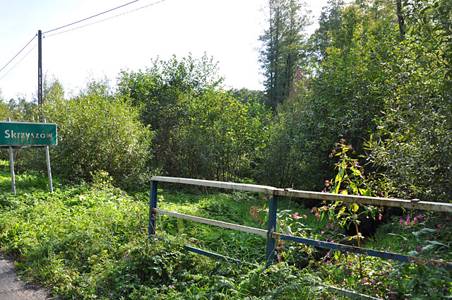 Skrzyszów koło Gowarczowa - od strony zachodniej. To w głębi tych zarośli, około 50 metrów od skraju drogi ugrzązł w bagnie STUH 42.