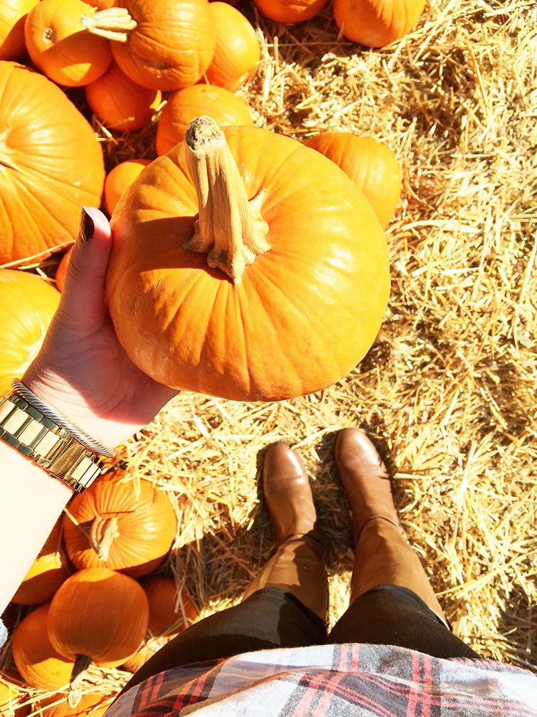 Fall Blogger Photo