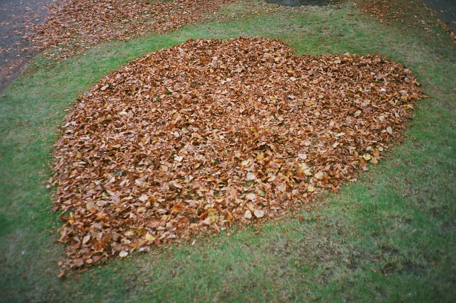 LOVE, SYMBOLS OF LOVE, SCULPTURE IN THE PARK, SITE SPECIFIC ART INSTALLATION, OUTSIDER ART, AUTUMN LEAVES, © VAC 100 DAYS 4 MILLION CONVERSATIONS