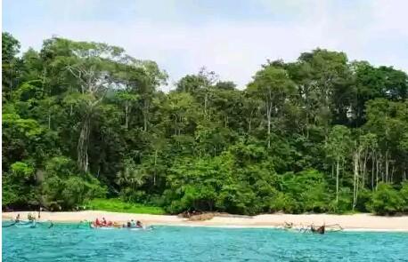 Di Teluk Ijo kita  Bisa berenang renang di airnya yanh berwarna hijau atau hanya sekedar bermain main air di pantainya. Dan tak akan jauh diseberang pantai terdapat kelompok bukit kecil. Di salah satu sisinya terdapat bebatuan yang berwarna kuning kecoklatan.