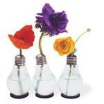 2012 Año Internacional de la Energía Sostenible