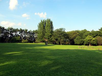 Ninomaru Garden Nagoya