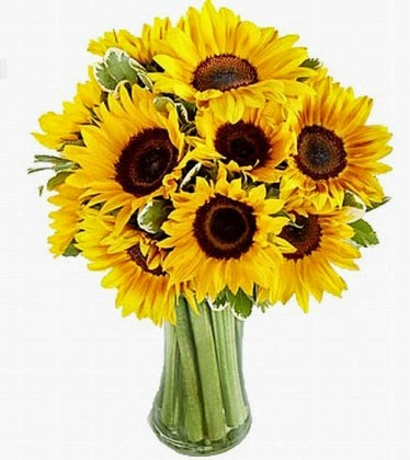 ηλίανθοι από το anthemionflowers.gr