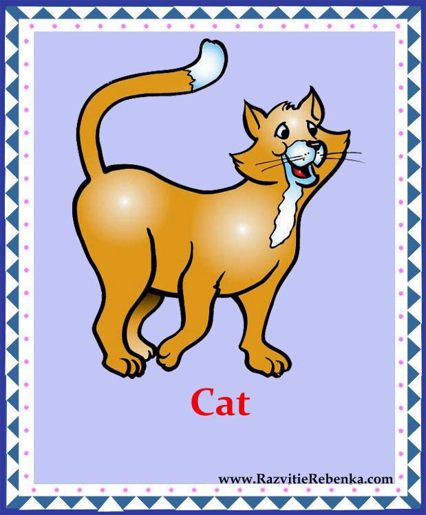 животные сочинения по английскому языку