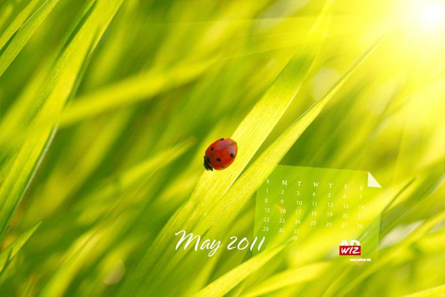 free desktop wallpaper 2020: love wallpaper and sweet ...