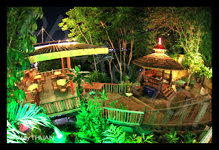 Jungle Themed Restaurant