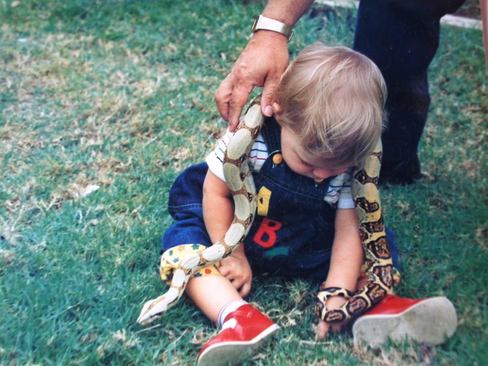 El duque de camelot el misterioso caso de la culebra con for Casa jardin culebra