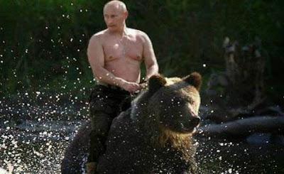 Putin cưỡi gấu