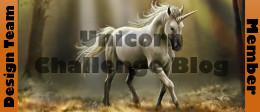 Unicorn Challenge Design Team Member