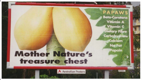 This pawpaw ad was both ethical and in good taste Unethical Ads Example