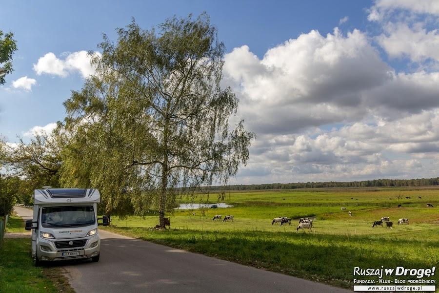 Kamper w akcji na podlaskich drogach