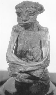 momia%2BPedro - Momia confirmaria la existencia de una raza perdida de gente pequeña en Norteamerica