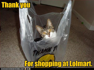 Lolcat thank you