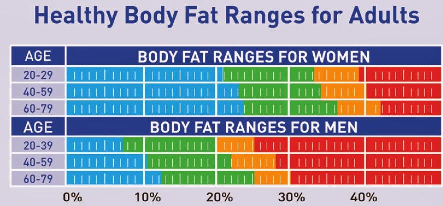 Healthy Body Fat Range For Women
