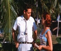 Hideout in the Sun (1960) 8