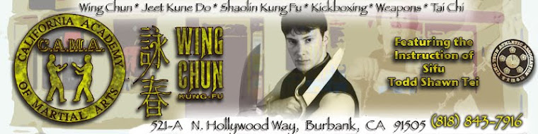 Kung Fu Banner