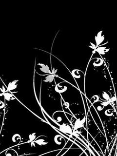 http://4.bp.blogspot.com/-ddQwRTJjrnY/TWZxF60f_GI/AAAAAAAAJeU/2hyEhDrPPxM/s1600/White_Flower.jpg