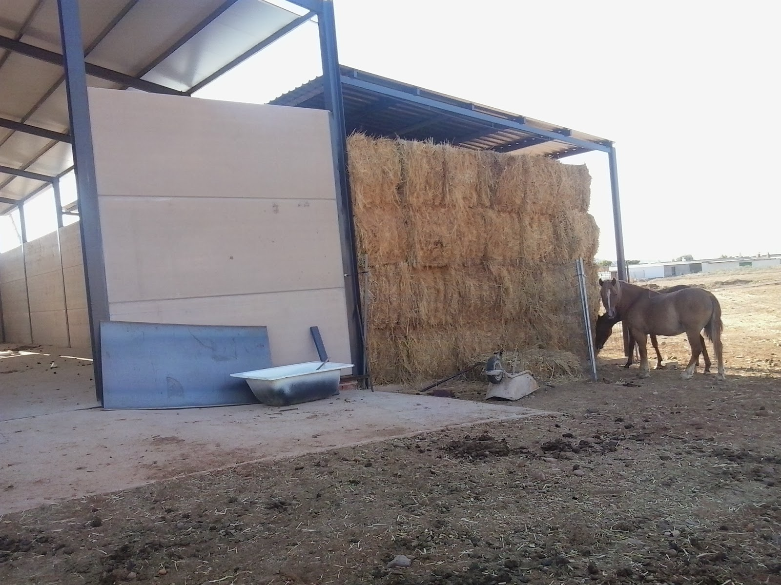 Boxes caballos expertos de boxes y cobertizos para for Cobertizos prefabricados