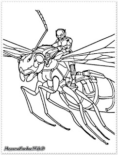 gambar sketsa ant man hitam putih