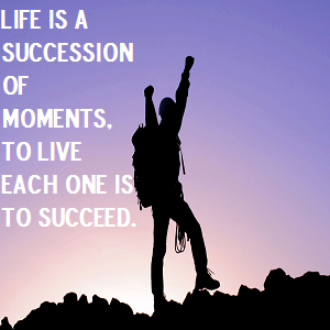 Life quotes, Success
