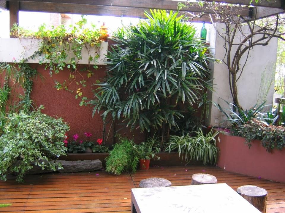 patios peque os en el jardin