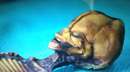 Ata, el alienígena de 15 centímetros