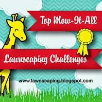 Lawnscaping Challenge 28/12/14