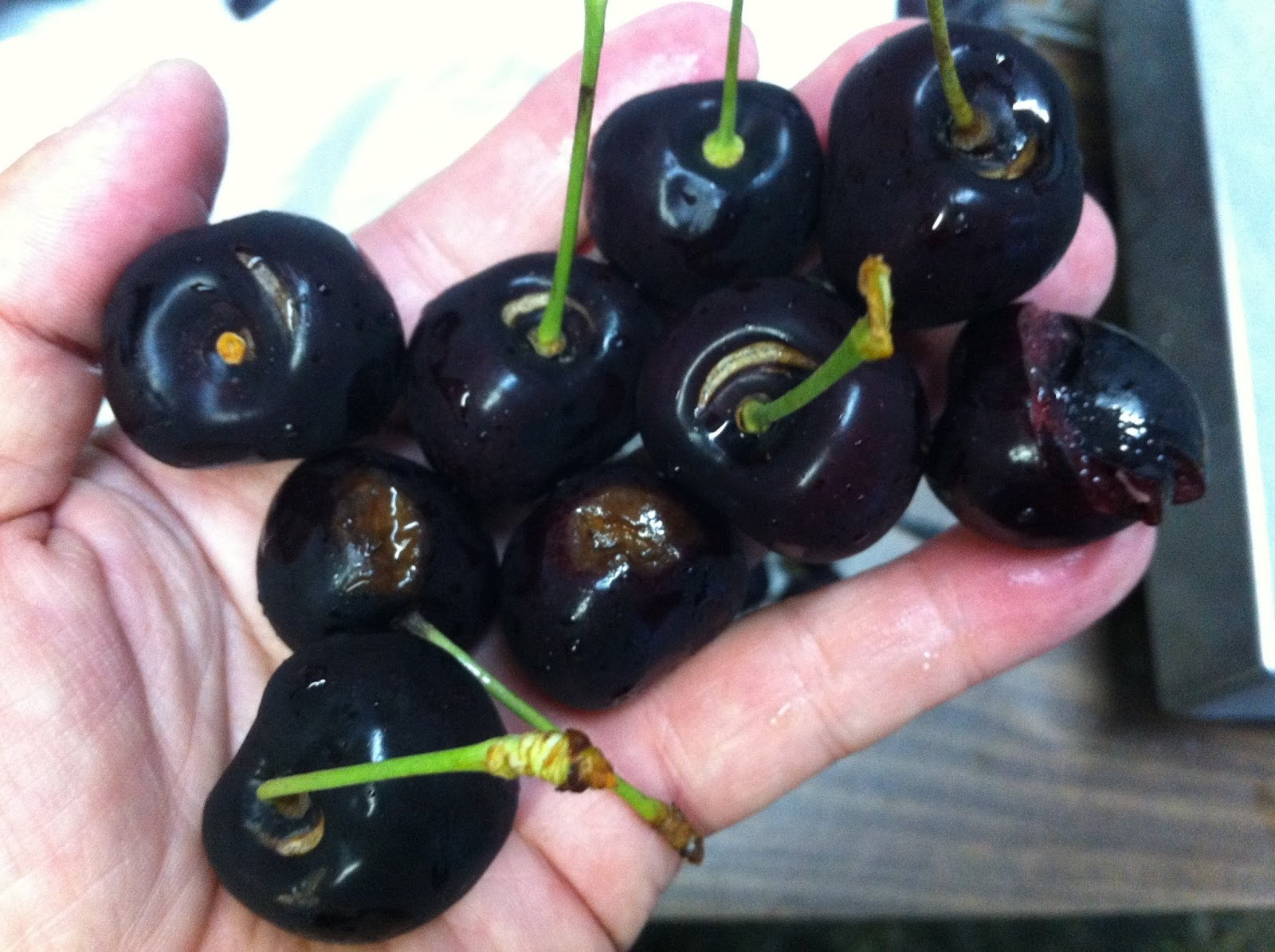 produce clerk the produce clerks handbook by rick chong culled cherries during packing stem bowl splits brown rot cracks