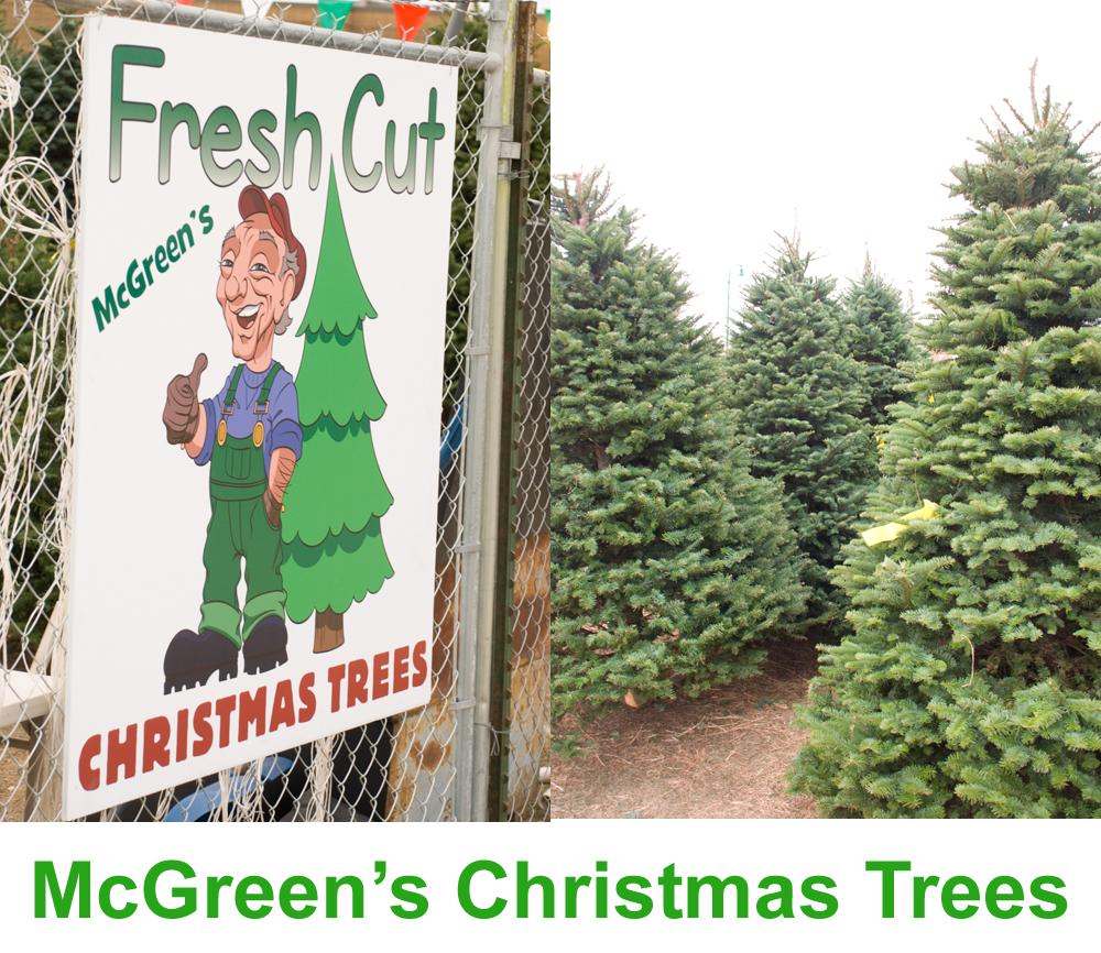 Mcgreens Christmas Trees Orem Utah