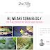 Sora-Blog Responsive Blogger Template