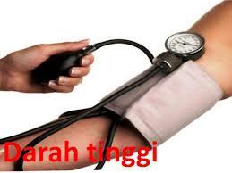 obat tradisional penyakit darah tinggi