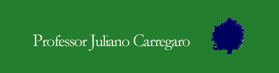 Professor Juliano Carregaro