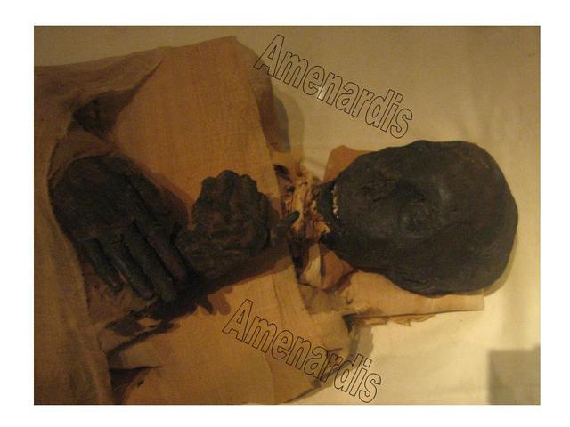 MOMIAS FARAONES, MOMIAS REALES, MOMIAS EGIPTO, tutmosis III