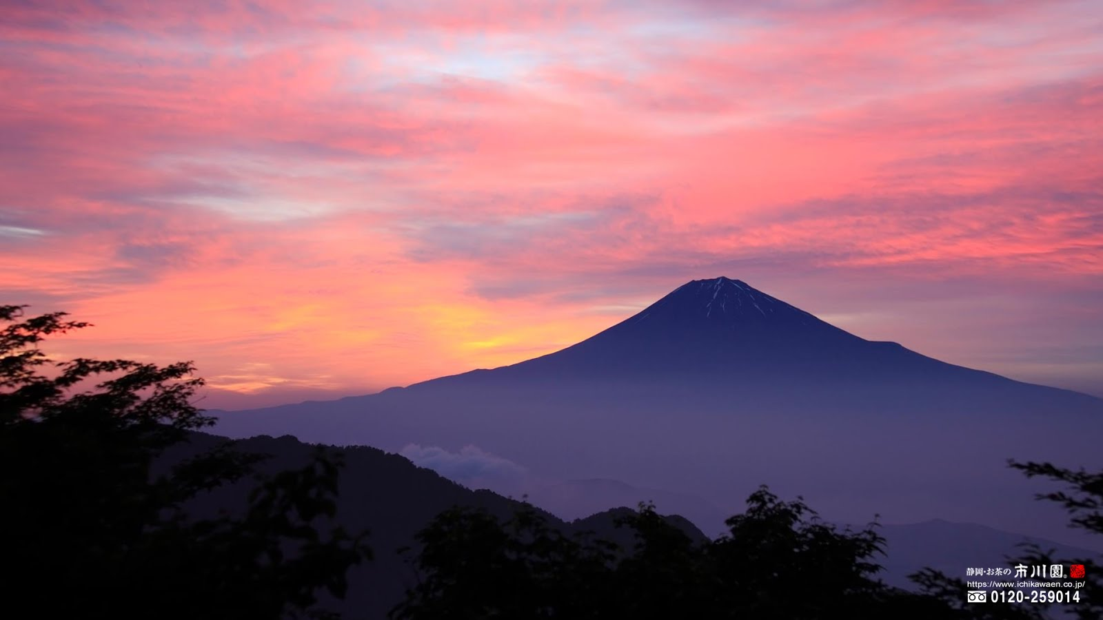 @ 市川オリ園ジナル ~ 富士山四季 2004-2017 壁紙ダウンロード
