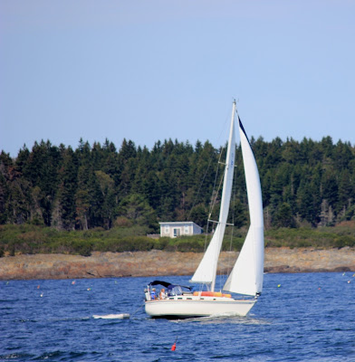 sailing near Harpswell, Maine