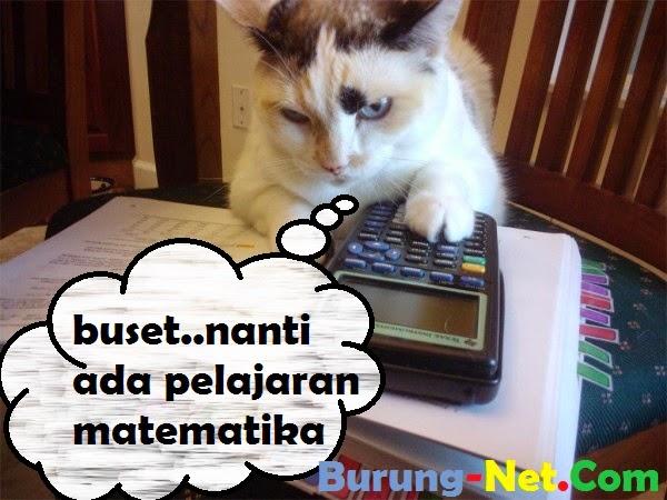 tips cara menghadapi pelajaran matematika