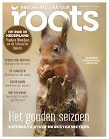Roots Oktober 2017