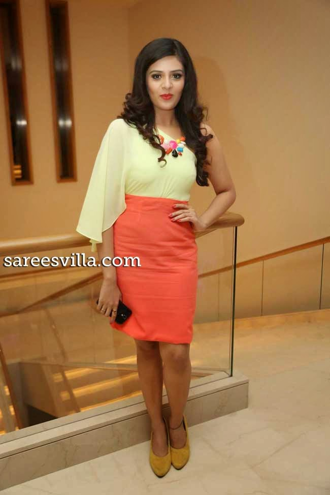 Srimukhi at Travel New Roads Book Launch