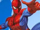 Örümcek Adam Elbise
