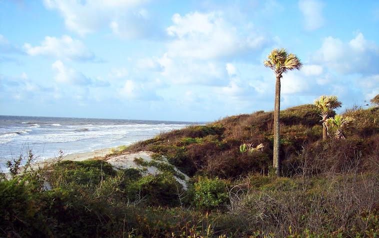 Jekyll Island Beach 2012