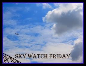 http://skyley.blogspot.com/